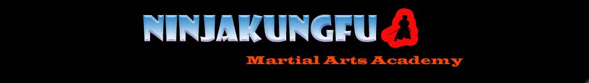 ninjakungfu kickboxing and martial arts academy - hyderabad